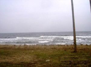 2009-mars-furuboda-yngsjo1
