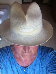Den vita hatten