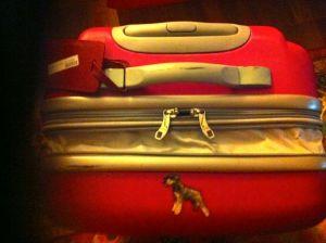 resväskan utan lås