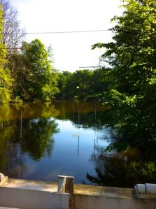Stilla flyter ån