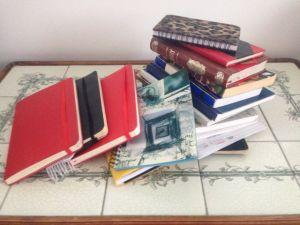 anteckningsböckerna