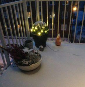 Den första snön